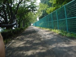 20080705_shidare