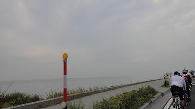 20101108_biwa02_2