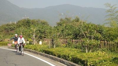 20101108_biwa06