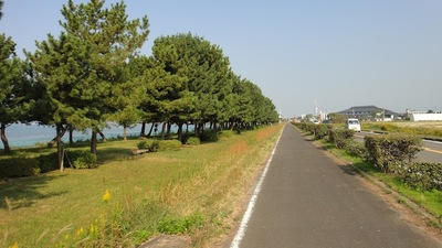 20101108_biwa09