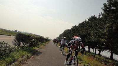 20101108_biwa10
