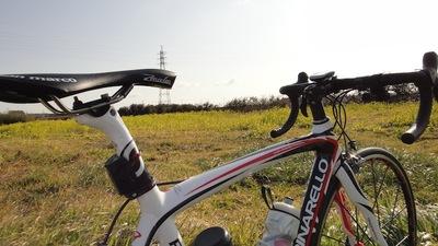 20110210_nanohana