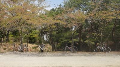 20110424_bikes