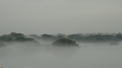 20110626_fog