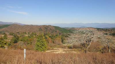 20111029_view2