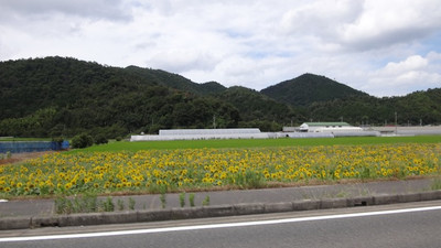 20120805_kyoto10