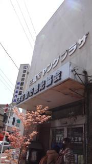 20140426_sakura_101