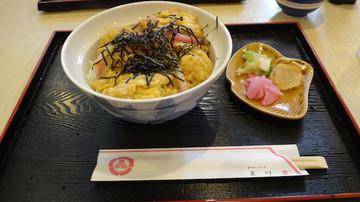 20140618_mikawa04