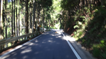 20140822_yabitsu_06